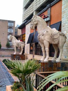 Pf changs horses