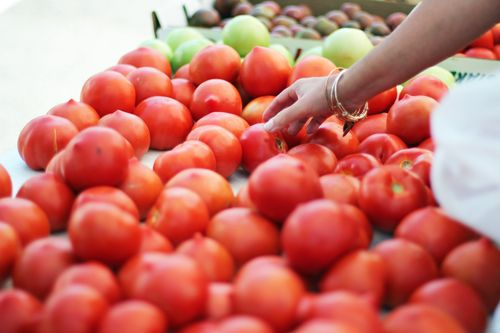 Tomato-hawthorne