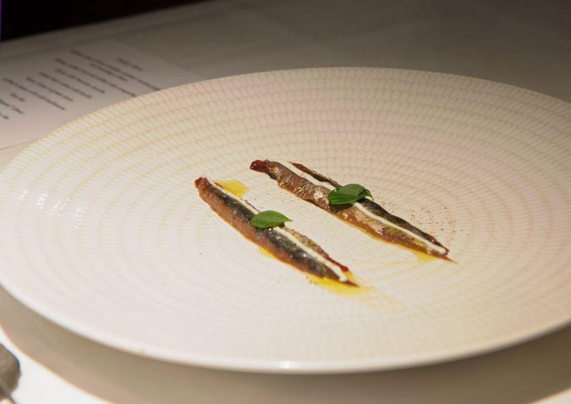 Rias de galicia anchovies