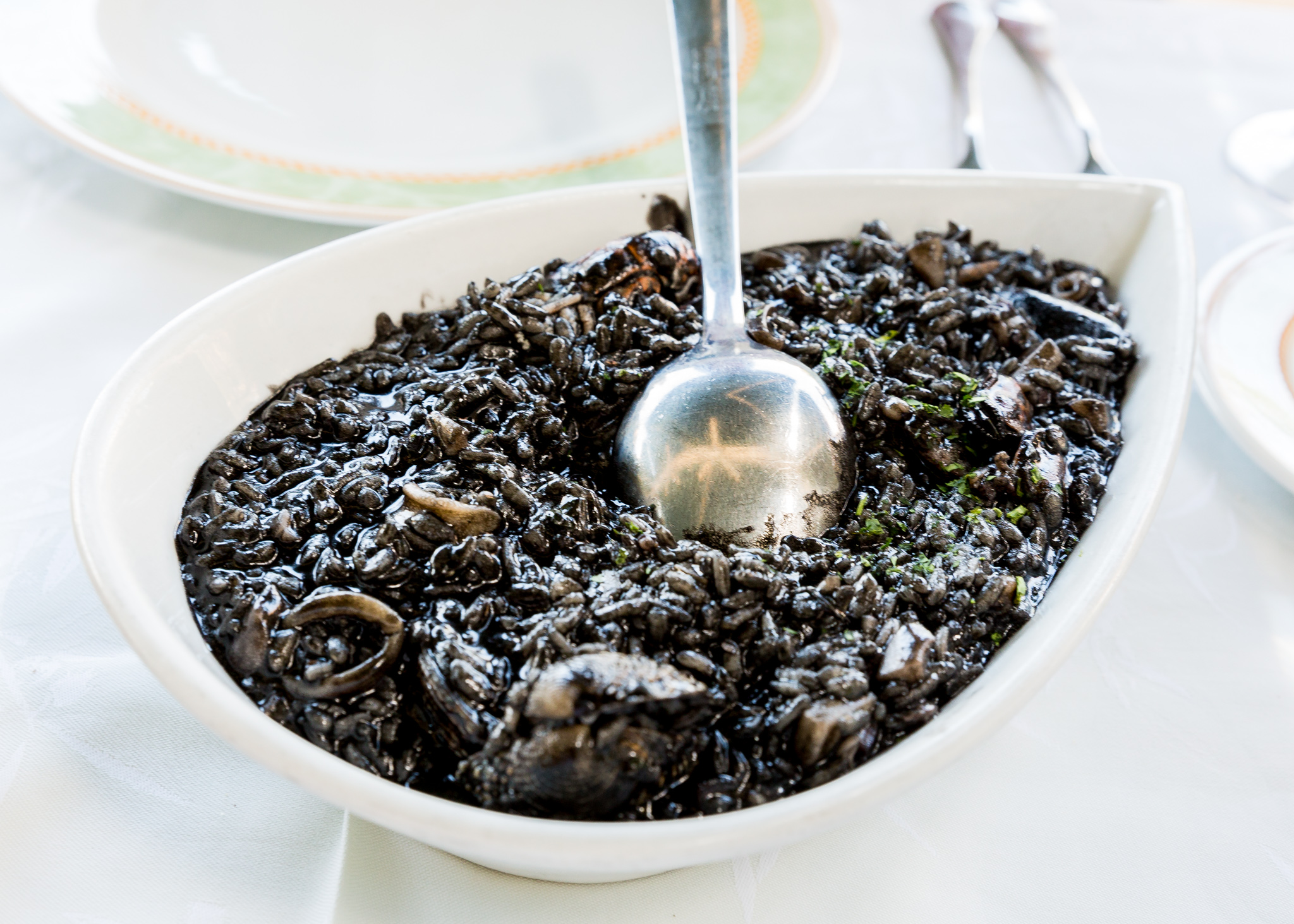Kapetanova black rice