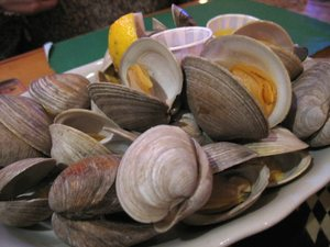 Pub_199_clams